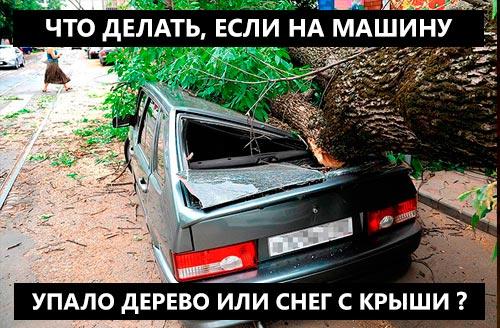 Дерево упало на машину? Упал снег с крыши на машину? Что делать? Как получить возмещение причиненного вам ущерба даже если у вас нет КАСКО