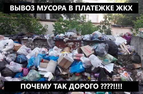 Вывоз мусора - новый тариф ЖКХ в 2019 году
